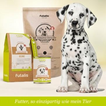 futalis® Konzept für Dalmatiner