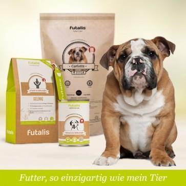 futalis® Konzept für Bulldoggen