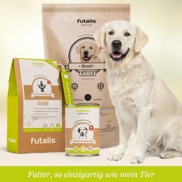 Trockenfutter für Ihren Hund