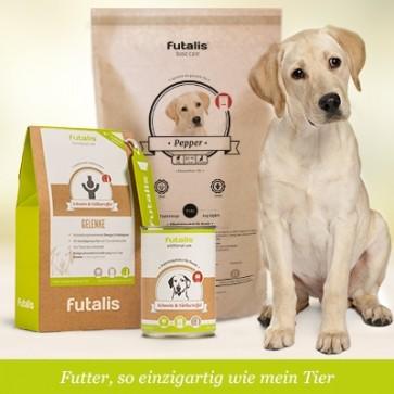 futalis® Konzept für Labradore