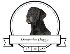 Deutsche Dogge Futter für rassespezifische Krankheiten