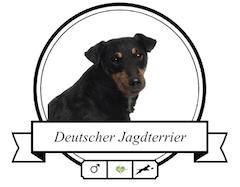 Deutscher Jagdterrier Futter für rassespezifische Krankheiten