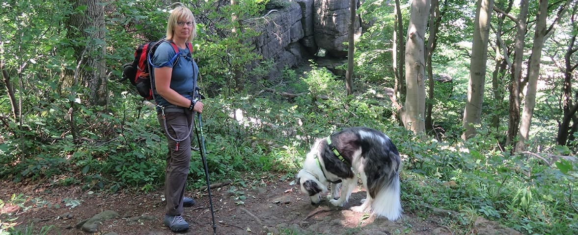 PTBS Assistenzhund Matze beim Wandern