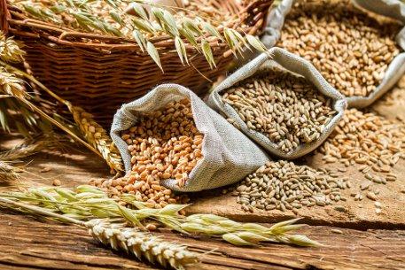verschiedene Getreidesorten im Futter