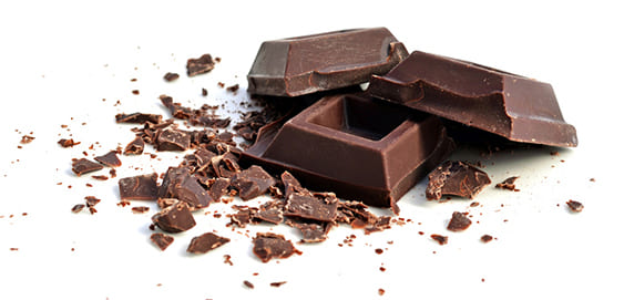 Hund Schokolade