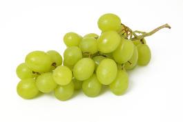 Weintrauben für Hunde