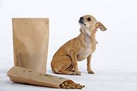 Hundefutter von futalis wird auf jeden Hund und dessen Probleme abgestimmt