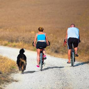 Mit Hund Fahrrad fahren