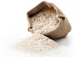 Reis und Reiskleie