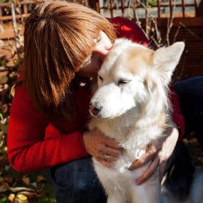 Hundefutter Test Kyra