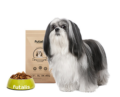 Lhasa Apso Futter