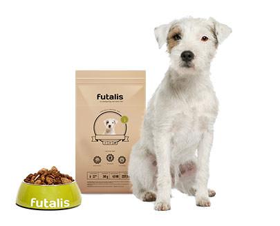 Parson Russell Terrier Futter