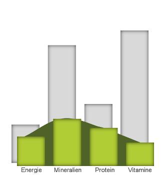 Mit futalis Futter wird der Nährstoffbedarf Ihres sensiblen Alaskan Malamute Welpen optimal gedeckt