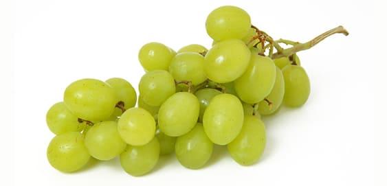 Weintrauben Durchfall