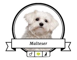 Malteser Malte