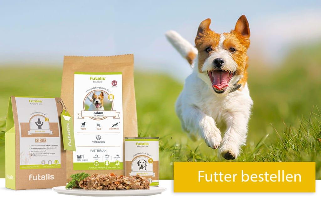 Maßgeschneidertes Futter für Ihren Hund