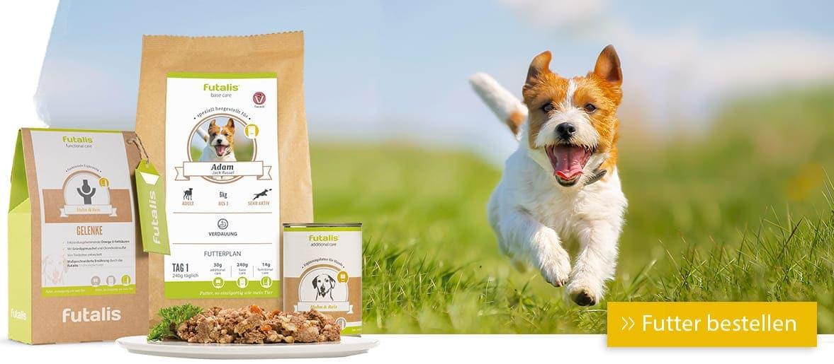 Maßgeschneidertes Futter für Hunde