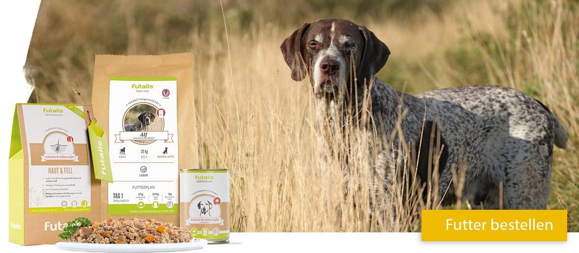 Leberdiät für Hunde mit Lebererkrankungen