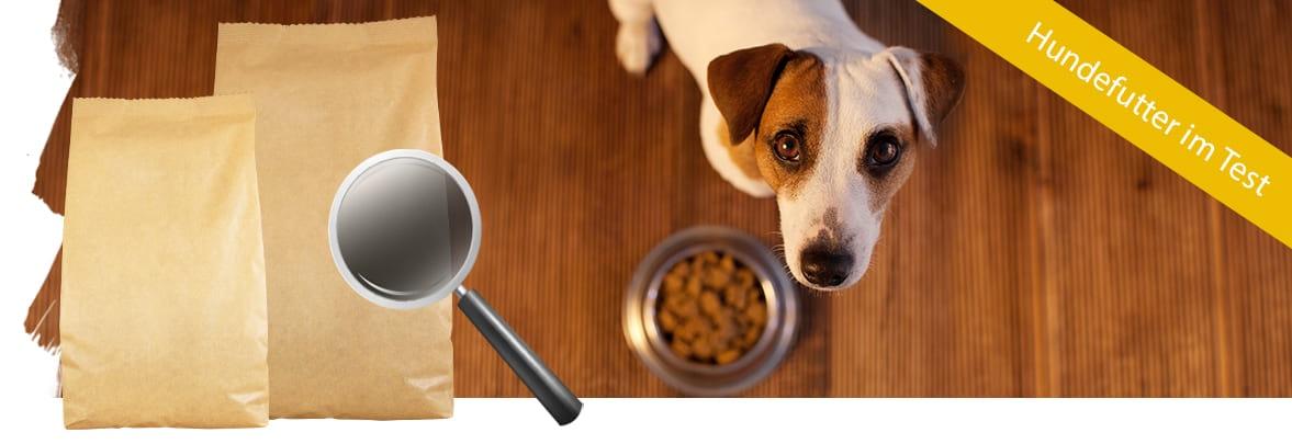 Hundefutter Vergleich