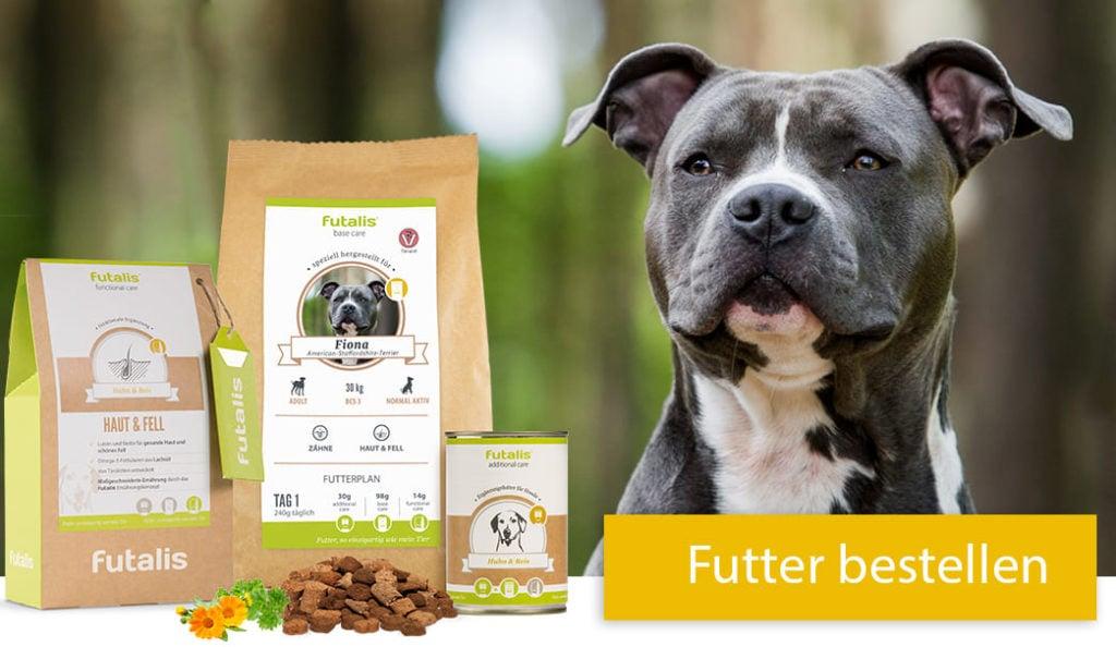 American Staffordshire Terrier Rassenfutter