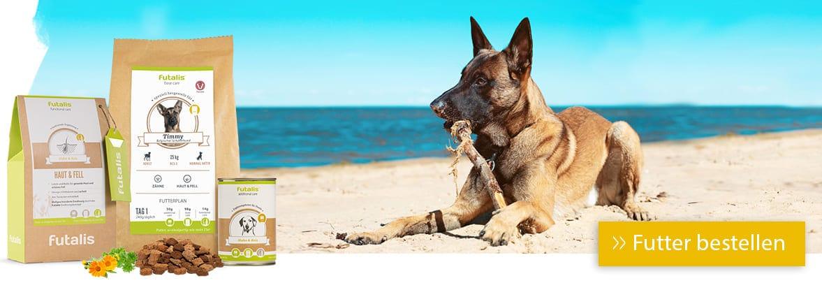 Belgischer Schäferhund Rassefutter
