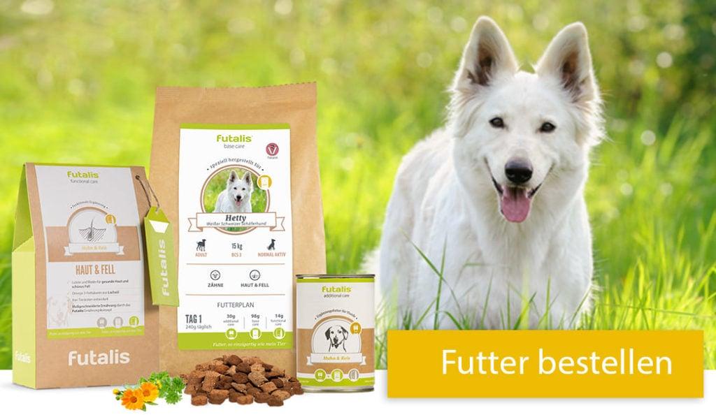 Weisser Schweizer Schäferhund Futter