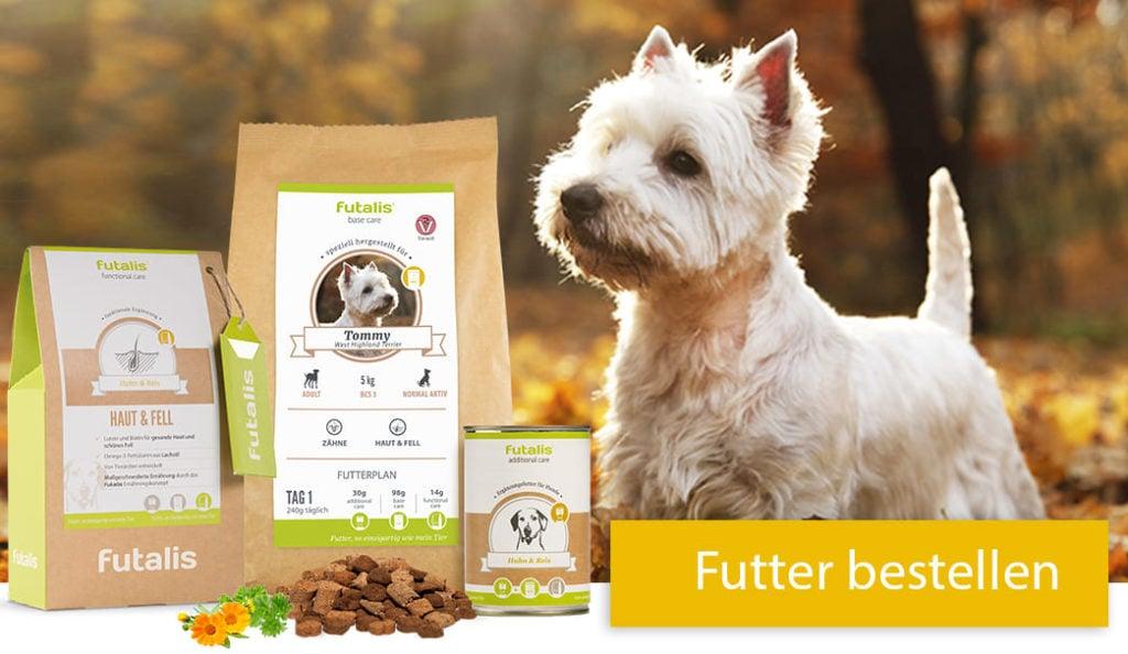 West Highland Terrier Rassefutter