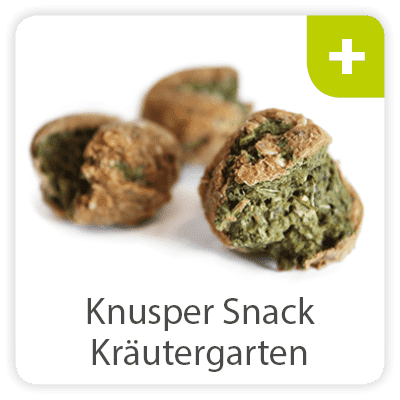 Knuspersnack Kräutergarten