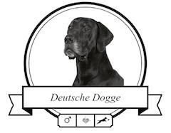 Deutsche Dogge rassespezifische Krankheiten