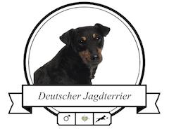 Hunderasse Deutscher Jagdterrier