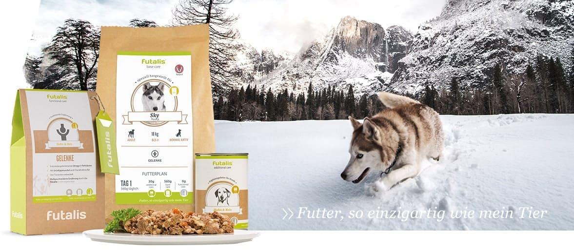 Größere Futterrationen für Hunde im Winter