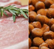 Verdaulichkeit von Fertig- und Rohfutter für Hunde