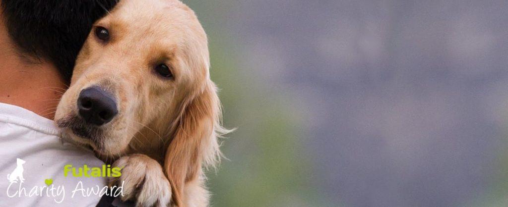 futalis Charity Award. Hunde als Helfer