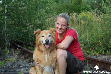 Hundeblog des Monats Mai 2017