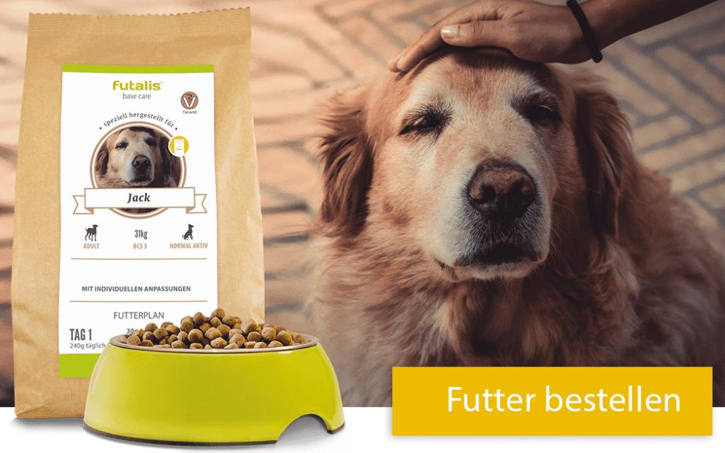Futter für Ihren Seniorhund